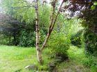 garden property image .17